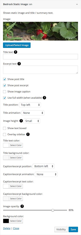 Static Image Widget settings
